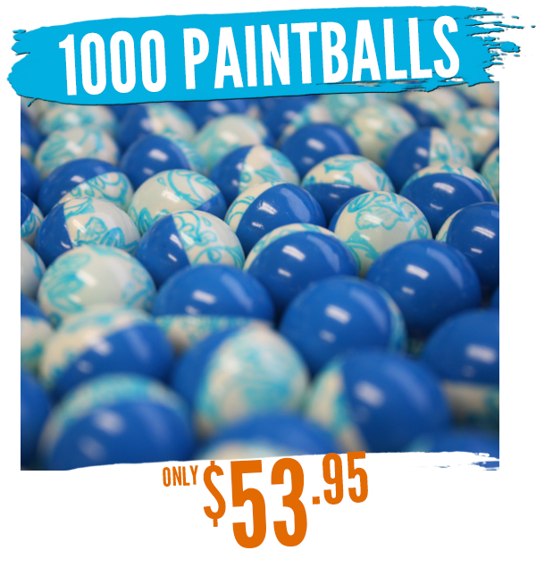 1000 paintballs